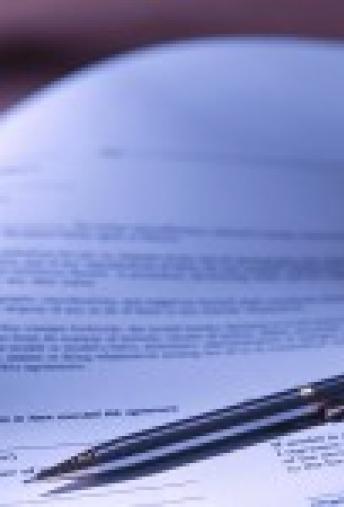 Business Litigation